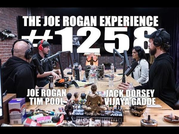 Joe Rogan Experience 1258 Jack Dorsey Vijaya Gadde Tim Pool