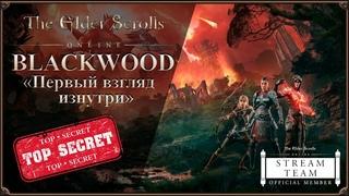 [Эксклюзив] BLACKWOOD - Первый взгляд изнутри   The Elder Scrolls Online
