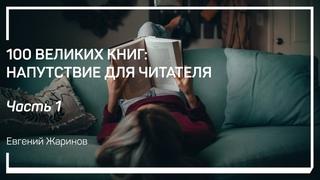 Книга, как процесс познания смысла. 100 великих книг: напутствие для читателя. Евгений Жаринов