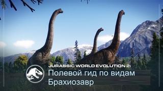 Полевой гид по видам | Брахиозавр | Jurassic World Evolution 2