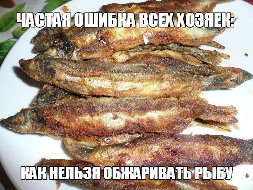 Частая ошибка всех хозяек: как нельзя обжаривать рыбу ... ...