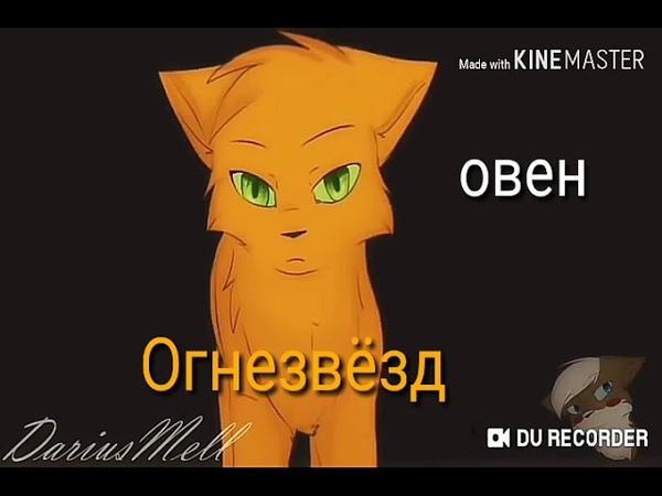 Кто ты из котов воителей по знаку зодиака 😁