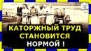 ☝️КАТОРЖНЫЙ ТРУД В РОССИИ СТАНОВИТСЯ НОРМОЙ !