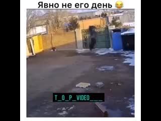 t_o_p_video______CGjx4lhDEEc___.mp4