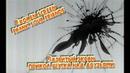Разбитый Экран - ПРИКОЛ ШУТКА НАД ДРУЗЬЯМИ / Broken Screen PRANK YOUR friends - Captain Obvious