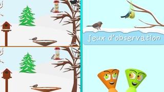 JEUX D'HIVER ❄️ Les oiseaux en hiver 🐦