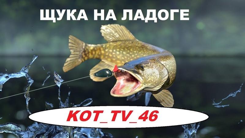 ЩУКА НА ЛАДОГЕ РР4 РУССКАЯ РЫБАЛКА 4 russian fishing