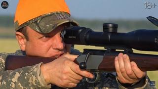 Лучшие выстрелы и моменты на охоте. Охота на медведя, лося и кабана