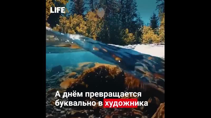 Природа настолько очистилась (1080p)