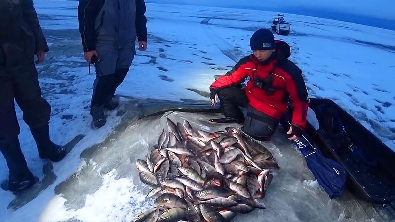 Наловили МЕШОК ОКУНЕЙ Рыбалка в палатке с КИТАЙСКОЙ автономкой вебастой