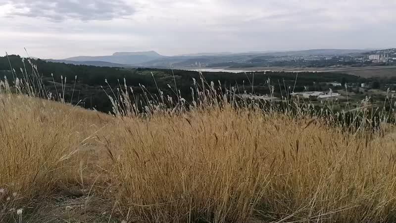 Сапфировая кисть Виды на горе