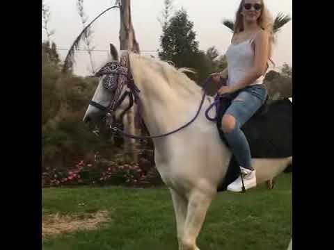 خولة بن عمران ركوب الخيل رووعة ponyboy