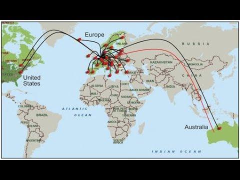 Démentèlement d'un réseau pédocriminel sur internet Opération KOALA abuseurs réels ou virtuels