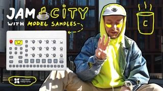 ☕ JAM CITY with Elektron Model Samples 🍪Садовые кварталы