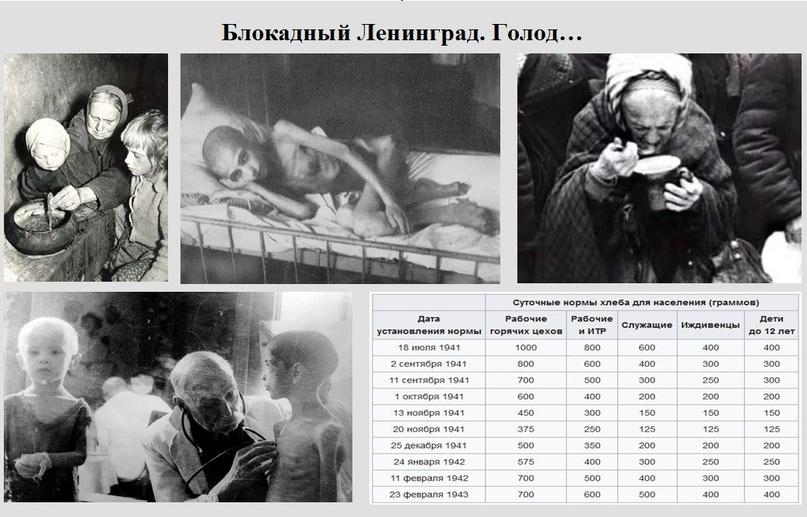 Блокада Ленинграда: история 827 дней в осаде., изображение №6