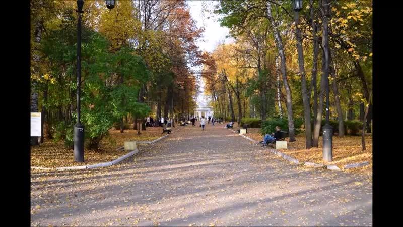 Александровский сад осень 2020 Полезные прогулки