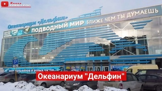 "Екатеринбургский океанариум ""Дельфин"""