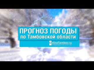Прогноз погоды в Тамбове и Тамбовской области на 16 декабря 2020 года