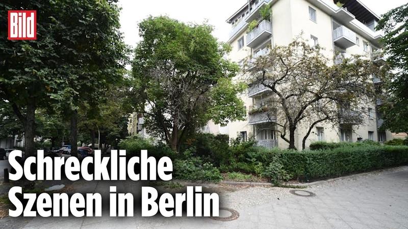 Horror Tat in Berlin Afghane 29 sticht Gärtnerin mehrmals in den Hals
