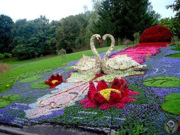 Очень красивые и оригинальные цветники. Красивые цветники, оригинального дизайна, украшенные яркими цветами, обвораживают и пленяют. Цветники в городских парках и скверах, а также на дачных