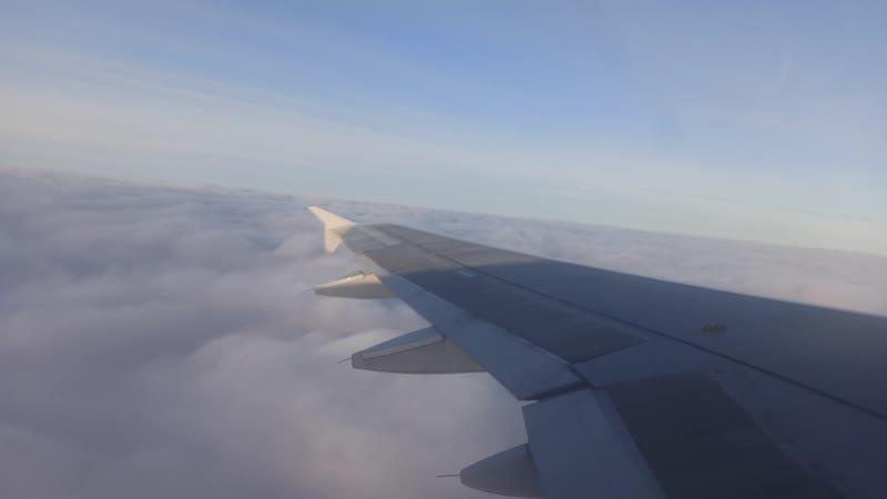 Ural Airlines Airbus A320 VQ BDM Жуковский Архангельск набор высоты 21 октября 2020