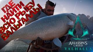 Где поймать крупную рыбу в Assassin's Creed Вальгалла! Часть 2