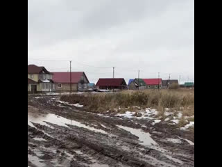 Многодетных поселили в село с волками, без освещения и без дорог