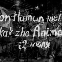 "12.07 ""Alibi"" NON-HUMAN ANIMAL, a kak zhe metod?"