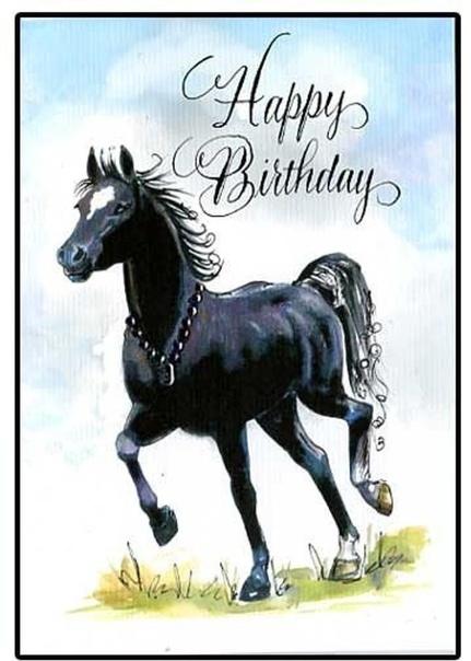 решением поздравления для конника на день рождения была