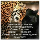 Фотоальбом Миран Ковальчук