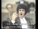 Franco Bonisolli - Di quella pira - Desde Japón.avi