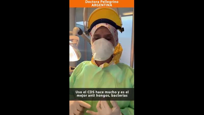 Dra Pellegrino usa CDS Petitorio de investigación
