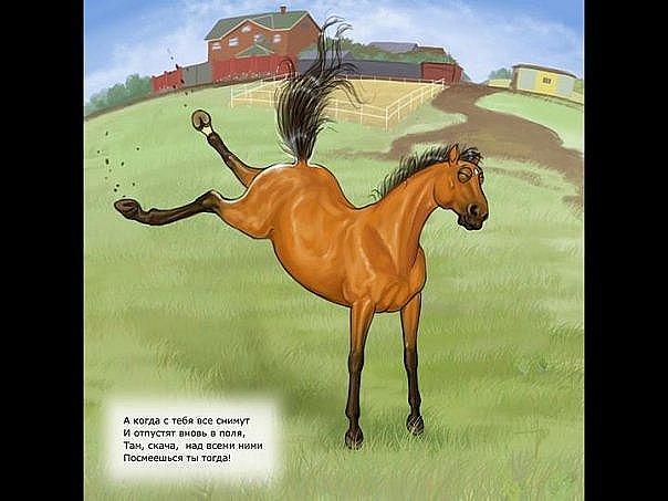 Открытки, открытка с прикольной лошадью