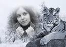 Персональный фотоальбом Маришки Пересады