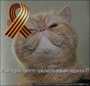 Фотоальбом Марины Матвеенко