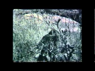 Dreadful Shadows - Homeless
