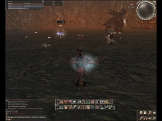 Best Lineage PvP PK movie ever - enemy
