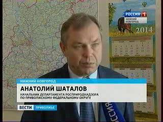 Росприроднадзор назвал причину загрязнения реки на улице Космической