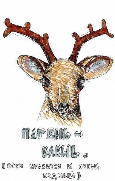 Прикольные картинки с надписями олени
