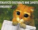 Фотоальбом Игоря Доленко