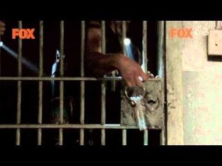 The Walking Dead - Polish Promo (SPOILER ALERT!!!!!!!)