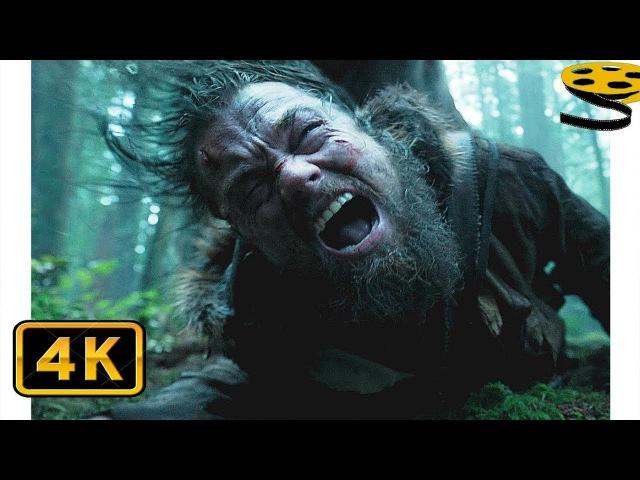 Хью Гласс(Леонардо ДиКаприо) против Гризли. Битва в Лесу | Выживший (2015) | 4K ULTRA HD