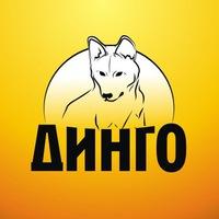 Елена Андреева: Помогать не стыдно, стыдно не помогать
