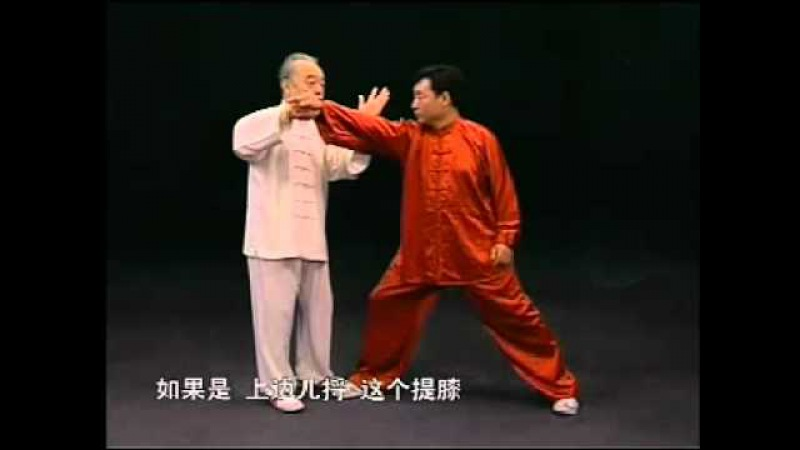 Ma Hong Applications of Taichi Chen Style 2 马虹 陈式太极拳拆拳讲劲 二