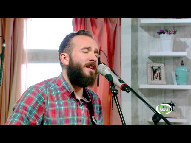 The BearFox Song of Lonely Hopes