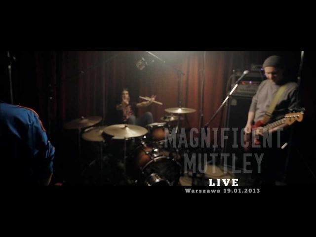 MAGNIFICENT MUTTLEY Stains otwARTa scena Live
