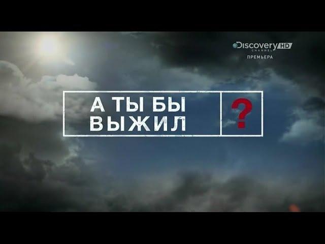 DISCOVERY А ты бы выжил 7 Серия Discovery