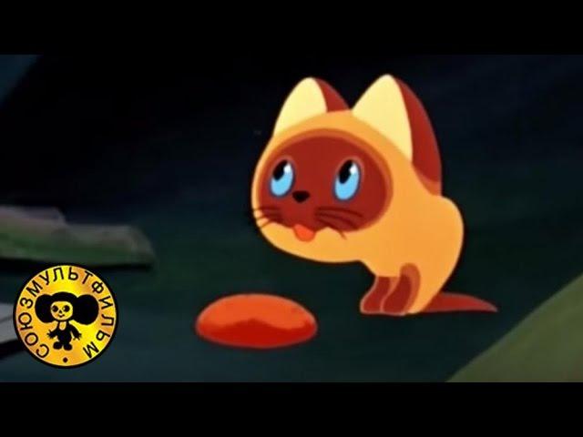 Котенок по имени Гав 2 серия Советские мультики для детей