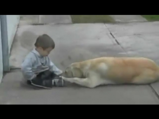 iSH8PYmYDBo_yt_10138278_148869702_Little_Boy_w_Down_s_Syndrome___His_Dog_-_Unconditional_Love_of_Man_s_Best_Friend.mp4.mp4