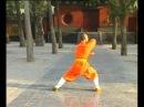 Shaolin DaHong Boxing by Shi De Yang